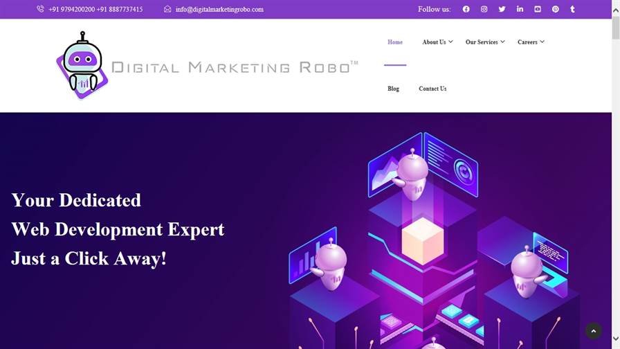 Digital Marketing Robo