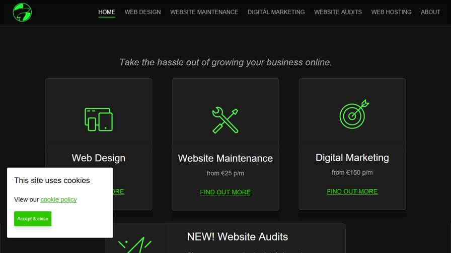 FlyingFish.ie Website Design, Maintenance & Marketing