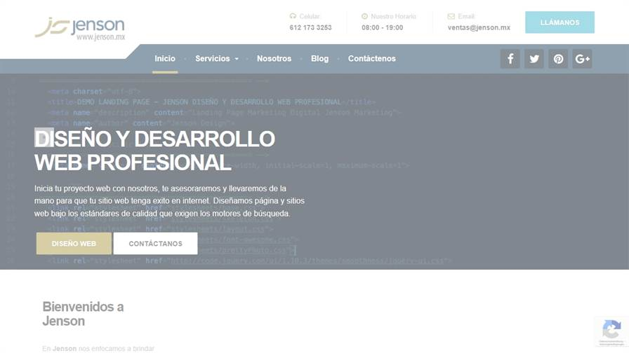 Jenson Design - Web Developmet UX UI Design