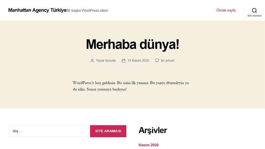 Manhattan Agency Türkiye UI UX Responsive Web Tasarım SEO Google Ads Sosyal Medya Reklam