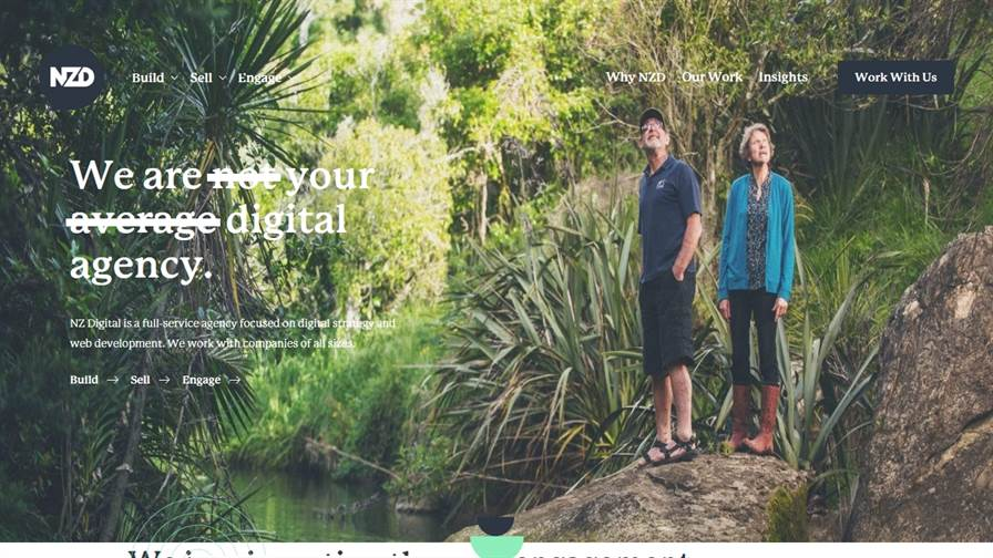 NZ Digital. Web Design & Digital Marketing Hawke's Bay