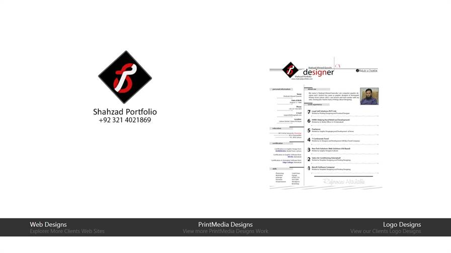 Shahzad Portfolio : Website Development & Marketing Services