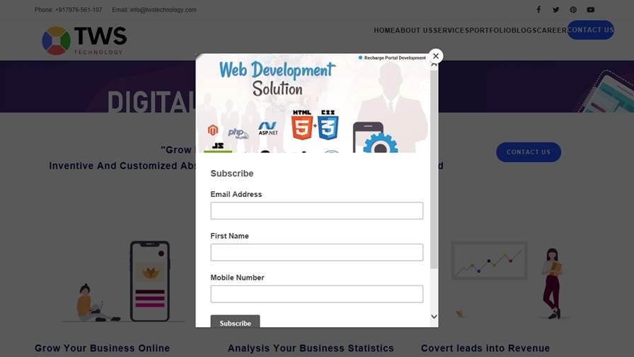 TWS Technology - Digital Marketing Company in Kota, Custom Web Design designer in kota