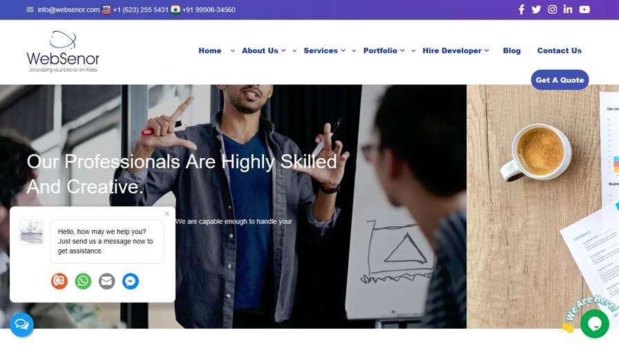 WebSenor - Website development company, Web desIgn company in Udaipur